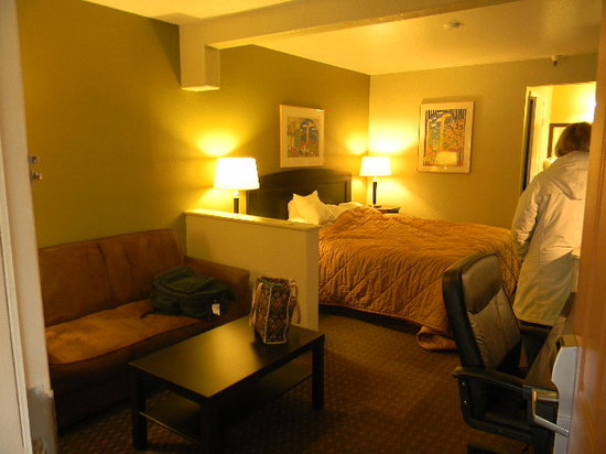 Comfort Inn and Suites Rancho Cordova:                   room 320 with the lights on