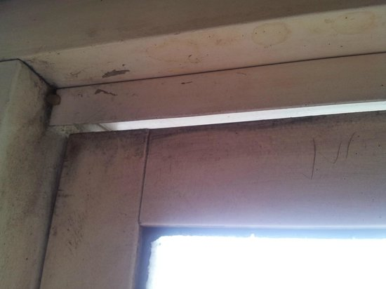 Sarovar Portico Ahmedabad: Window seal, no noise insulation
