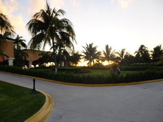 Heaven at the Hard Rock Hotel Riviera Maya:                                     On the way to dinner one evening.