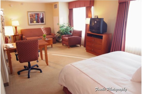 Homewood Suites Dulles - North / Loudoun, VA: King Suite