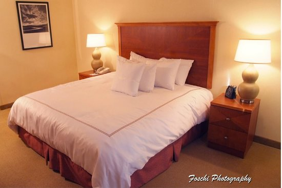 Homewood Suites Dulles - North / Loudoun, VA: Suite
