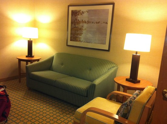 Embassy Suites Chicago O'Hare Rosemont:                                     Salon