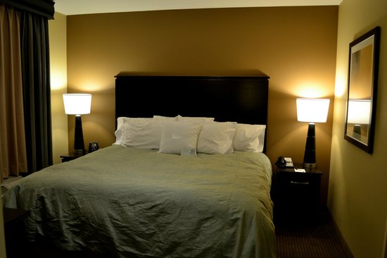 Homewood Suites by Hilton Phoenix Chandler Fashion Center:                   Bedroom