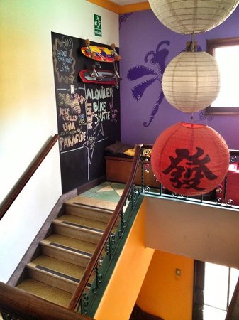 Dragonfly Hostels:                   The Entrance