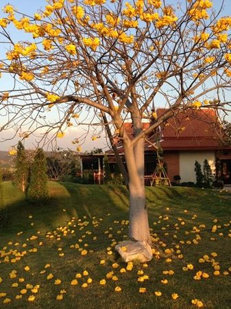 Bed and Breakfast i Kaeng Khoi