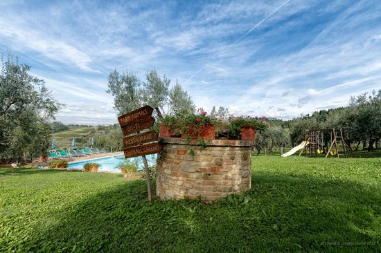Montespertoli, : Agriturismo Montalbino - The garden and the swimming pool