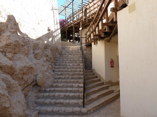 Sharks Bay Umbi Diving Village:                   The path to the hotel rooms