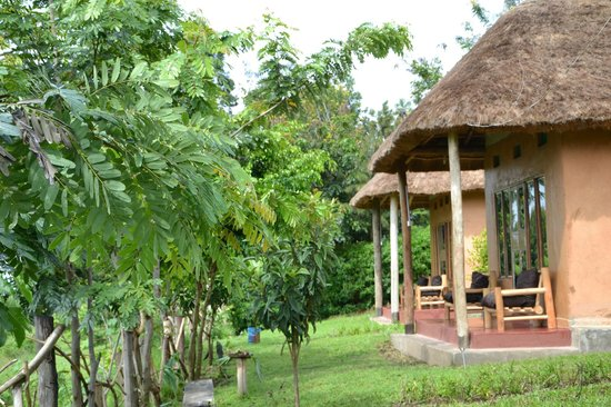 Pumba Safari Cottages