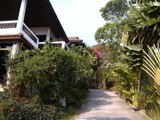 Chaweng Bay View Resort:                   clean path