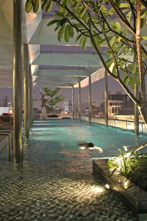 Morrissey Boutique Serviced Apartment: Pool at night
