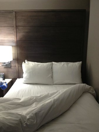 Doubletree by Hilton Bloomington - Minneapolis South: Nice new design, but like putting lipstick on a pig. SOOO dirty and old