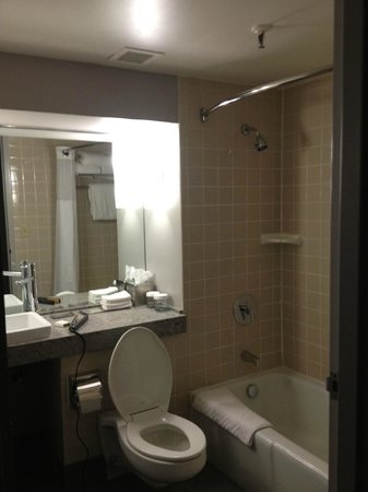 Doubletree by Hilton Bloomington - Minneapolis South: Ok looking bathroom - SOOO unclean