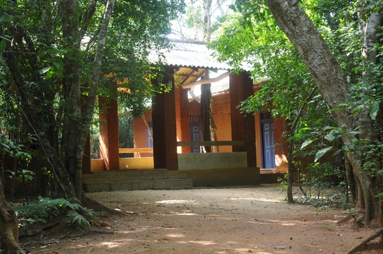 Back of Beyond, Pidurangala