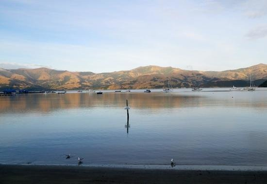 Garthowen Akaroa B&B: Early morning view from B&B
