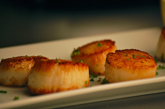 Plantsville, CT: Pan seared Stonington sea scallops