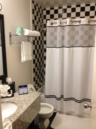 BEST WESTERN PLUS River North Hotel:                   bathroom