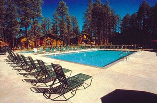 Photo of Pinetop Resort