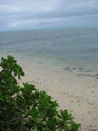 Moorea EcoLodge&SPA:                   Beach from property.