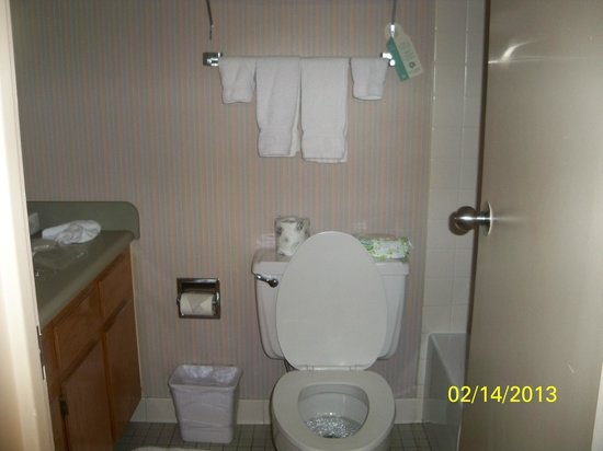 Garfield Suites Hotel:                   Bathroom