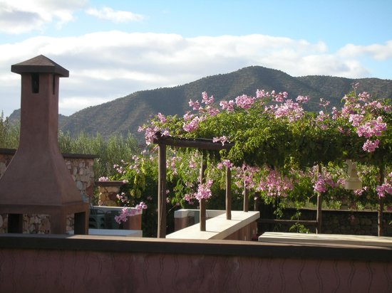 DOMAINE MALIKA Atlas mountains Hotel:                   mountain view from room
