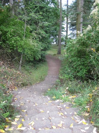 Ruckle Provincial Park:                                     Well marked trails, can't get lost!