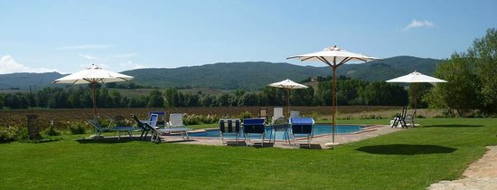 Buonconvento, Wochy: La piscina