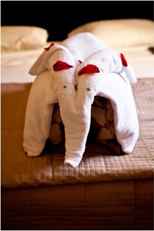 Iberotel Coraya Beach Resort:                                     Towel art
