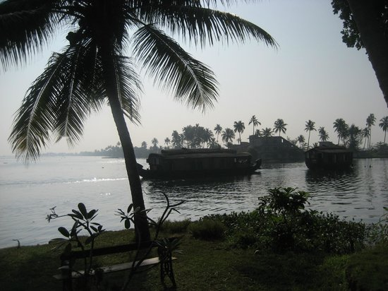Punnamada Resort:                   View from the dining room in the morning.