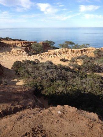 The Lodge at Torrey Pines: view from state reserve next door