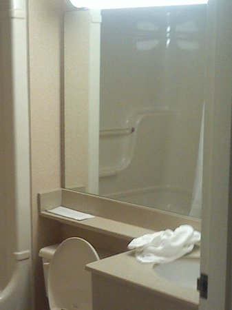 Holiday Inn Bloor Yorkville: Decent-sized generic bathroom