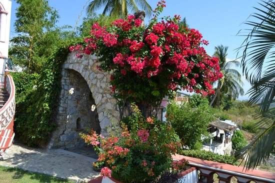 Hotel Paraiso Escondido:                   Flowery garden