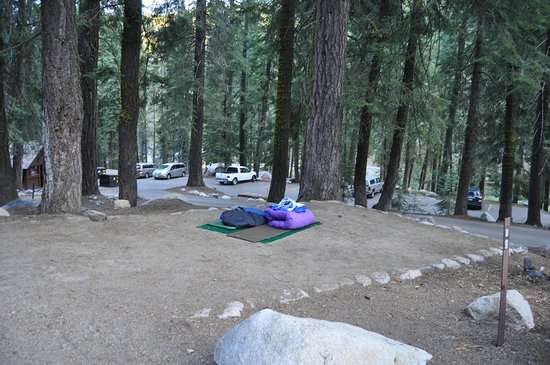 Lodgepole Campground:                   area for tents or in our case sleeping bags