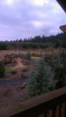 Carson, WA: View from our cabin