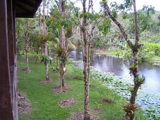 Hacienda Jacana:                   View of lake from Cabin 2