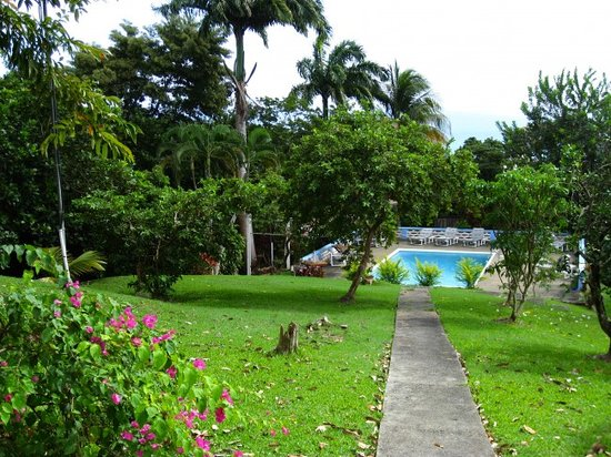 Pool grounds picture of richmond great house tobago for Richmond gardens pool
