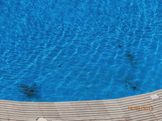 Delphin Ribat:                                     more dirt in outdoor pools