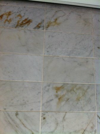 Trianon Hotel:                   stains on tiles