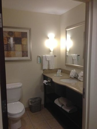 Comfort Suites Syracuse - Cicero: Bathroom