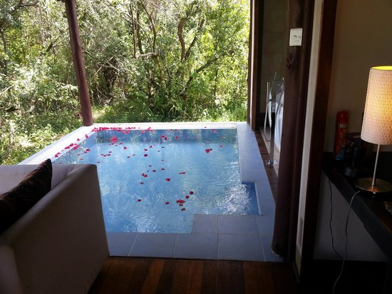 Ngerende Island Lodge:                   plunge pool