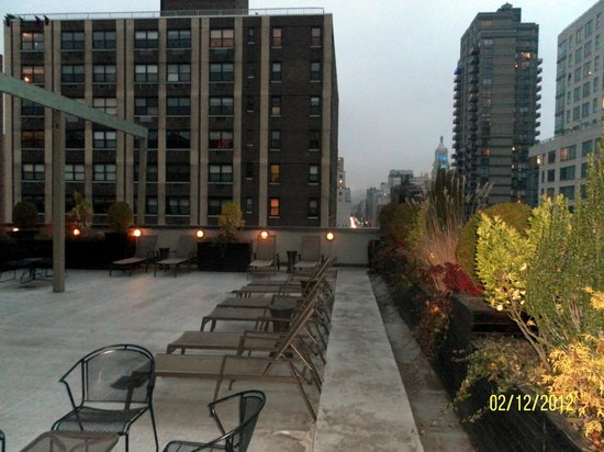 The Marcel at Gramercy:                   From the hotel roof