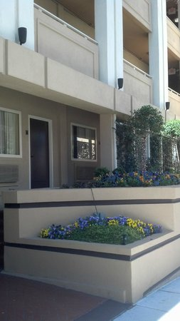 BEST WESTERN PLUS Inn at the Peachtrees: From the sidewalk of Peachtree Street