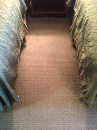 Quality Inn: stained carpets 127
