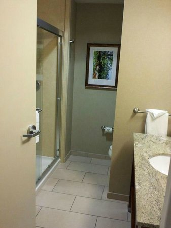 Hampton Inn &amp; Suites Salem:                                     Nice spacious bathroom in King Bedroom