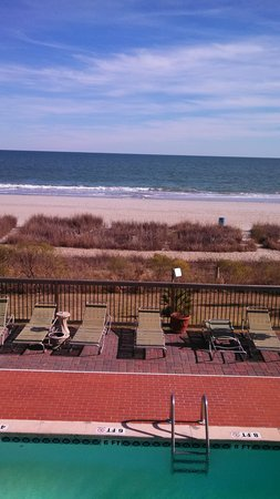 Driftwood Lodge Myrtle Beach:                   pool/ocean view