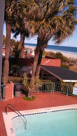 Driftwood Lodge Myrtle Beach:                   ocean view from pool side