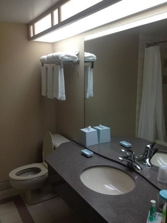 Four Points by Sheraton Winnipeg International Airport:                   Bathroom