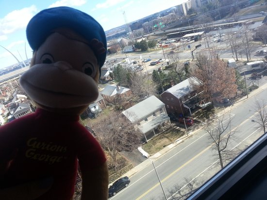 Sheraton Pentagon City Hotel:                   george loves the view