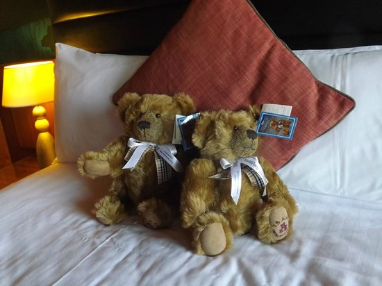 Lodge on Loch Lomond:                                                       Teddies for sale , awe they are cute xx