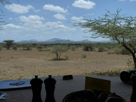 Severin Safari Camp:                   Oh, what a lunch (experience) in such an area (do not feed the animals :-))