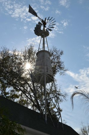 Grandview Bed and Breakfast:                   Room built around a windmill at Grandview - charming!